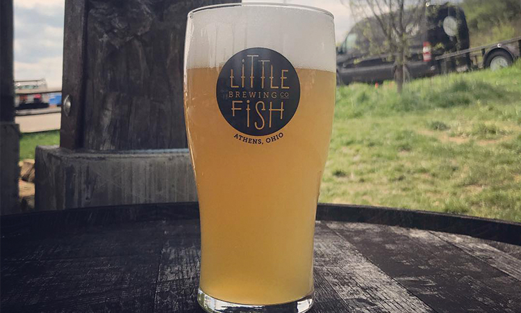 Little Fish Cantrip IPA in a pint glass