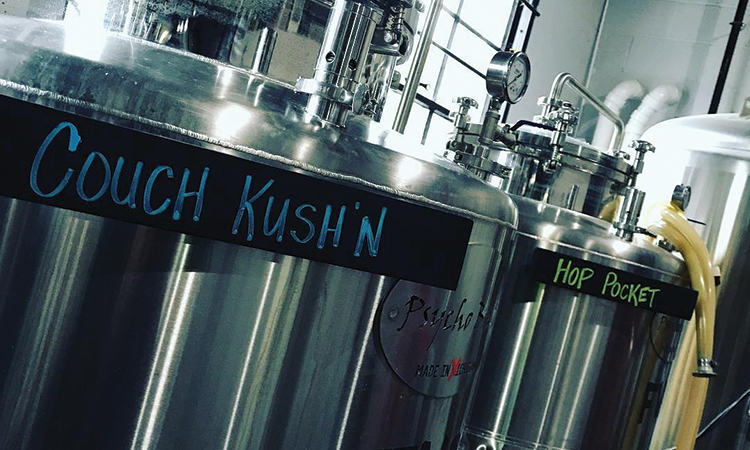 DankHouse fermenters containing Couch Kush'n and Hop Pocket beers