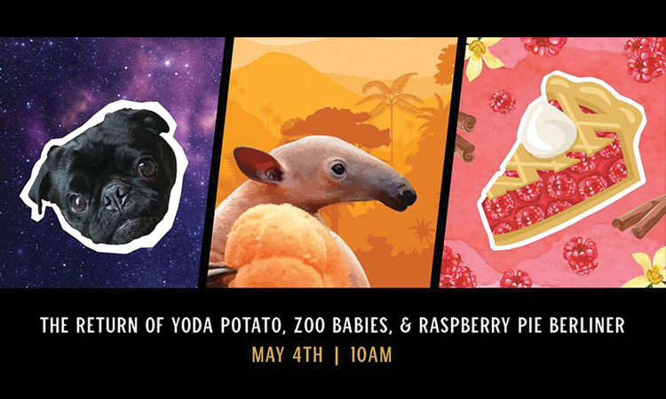 Listermann Brewing - The Return of Yoda Potato, Zoo Babies & Raspberry Pie Berliner, May 4th, 10 a.m.