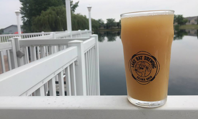 Lake Rat Brewing - pint glass on the dock