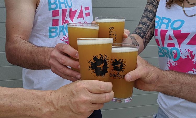 Sideswipe Brewing - Bro Haze Bro